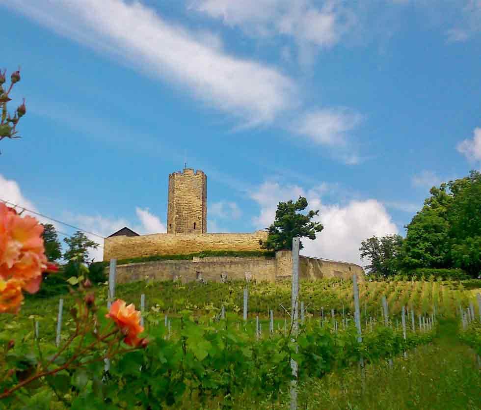 Im Herzen des Kraigau: die unterhalb der Burg Steinsberg gelegenen Weinberge des Weinguts Uhler & Blank
