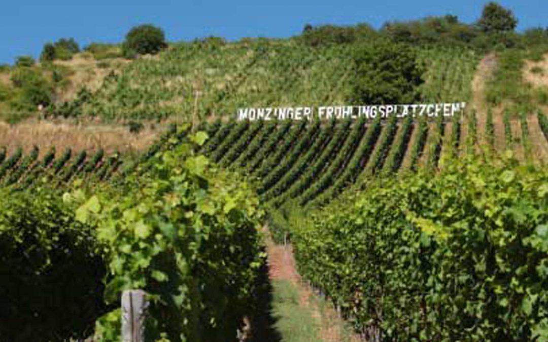 3 Antworten – Monzinger Frühlingsplätzchen – Weingut Weber